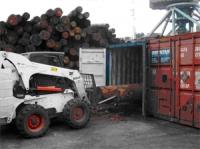 Погрузка «леса круглого» в контейнер
