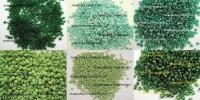 Бисер мелкий 1,5-2мм зеленый