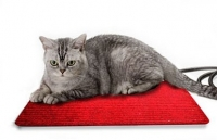 Коврик с подогревом для кошек