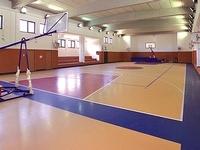 Спортивный линолеум Grabo