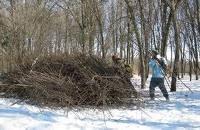 Уборка мусора,  покос травы, спил деревьев
