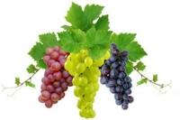 Наномикс-виноград элита