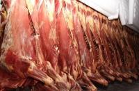 Мясо коровы 80+ в полутушах