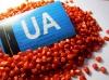 Семена кукурузы ранняя ДН Пивиха ФАО –180 от производителя.